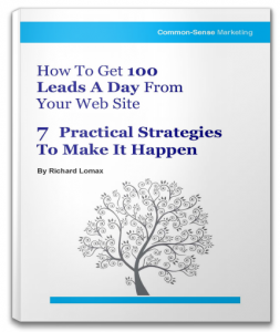 How to get 100 leads a day from your web site